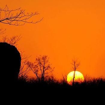 夕阳红旅游专题