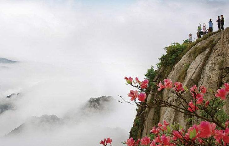 【醉美黄山】黄山+九华山双卧六日游