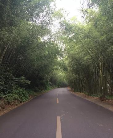 秦王湖一日游