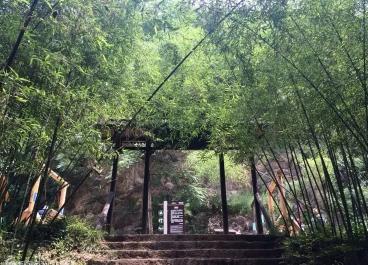洛邑古城、重渡沟、鸡冠洞高端品质纯玩三日游